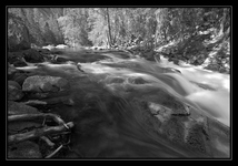 Tenaya Creek, Yosemite